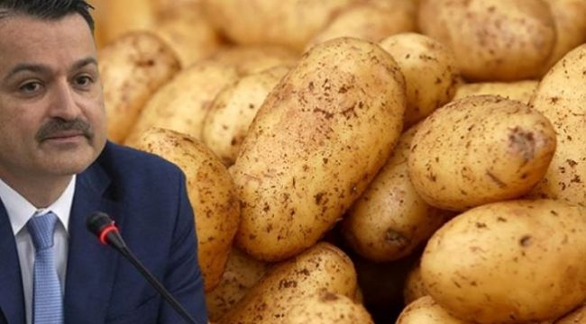 Patates ithalatından Pakdemirli çıktı