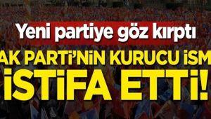 Davutoğlu'nun ardından AKP'nin ilk kurucusu da istifa etti
