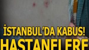 İSTANBULDA HA-STANELERE KOŞTULAR