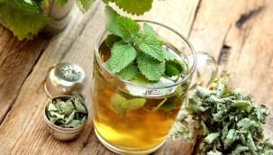 Melisa Çayı Ne Zaman Etkisini Gösterir?